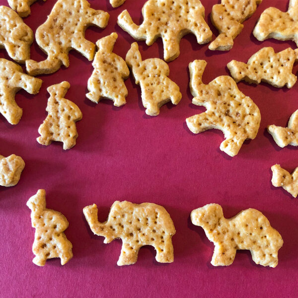 Tuc selber machen | veganes Butter-Salz-Weihnachts-Knabber-Cracker